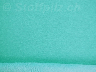 Wellness Sweat - Alpenfleece mint